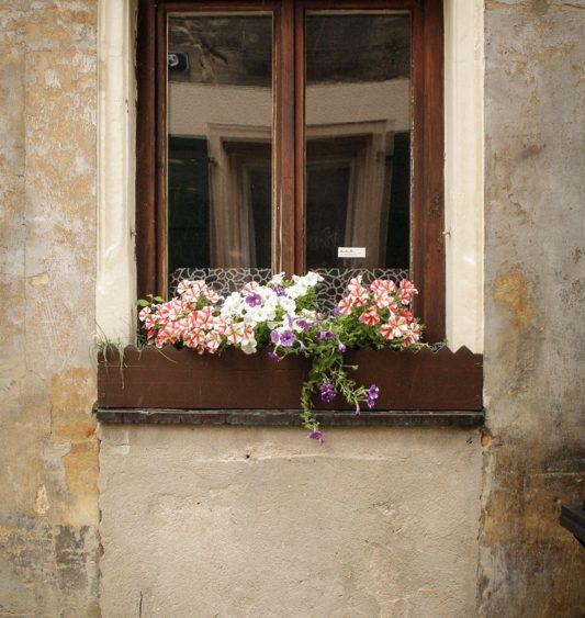 Mariya Boyanova Bayreuth Cityscape Photography